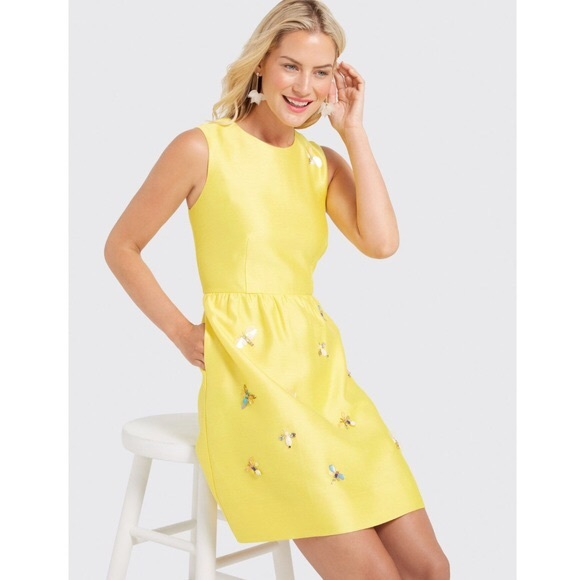 Draper James Dresses & Skirts - Draper James 🐝Dress NWT 6